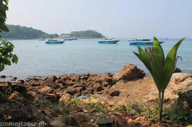 Wyspa Ko Lan #Tajlandia