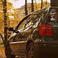 #Polo #Volkswagen