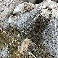 #fontanna #kamień #krople #rzeźba #strumień #strumyk #woda #żabka